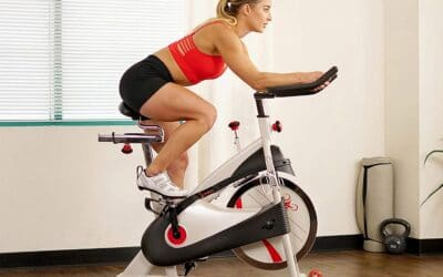 Sunny Health & Fitness Premium Indoor Cycling Exercise Bike Review
