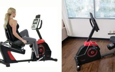 Sunny Health & Fitness Evo-Fit Cardio Recumbent Bike Review