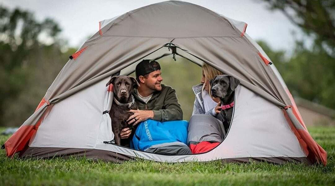 ALPS Mountaineering Lynx 4-Person Camping Tent Review
